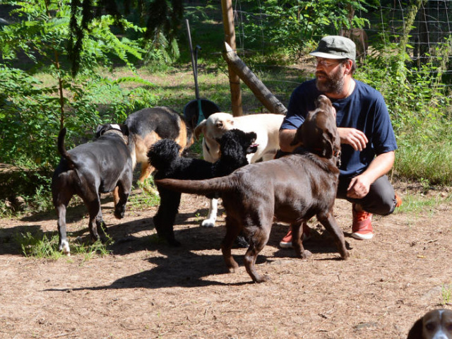 Hunde und ihre Halter im Glück